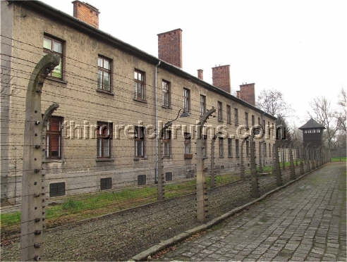 auschwitz a prisoner camp an industrial Their account detailed the camp's geographical layout, internal conditions, and   in birkenau when the auschwitz industrial areas were hit, told of the prisoners .